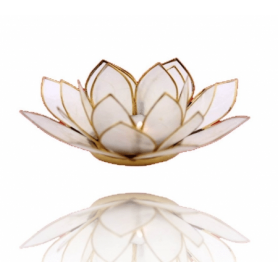 Lotus Licht - mit Goldrand - naturfarbig
