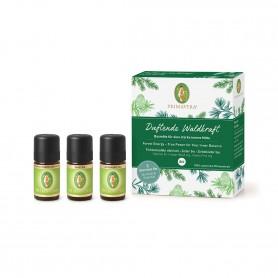 Primavera®  Ätherische Öle - Set Duftende Waldkraft