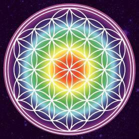 "Leinwanddruck ""Blume des Lebens"" regenbogenfarben - Kosmos 40cm"