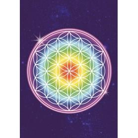 Postkarte Blume des Lebens - Regenbogen C6