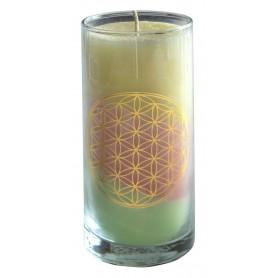 """Kerze """"Sea BDL"""" im Glas Stearin 14cm pastell"""
