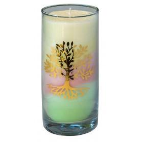 "Kerze ""Dream Lebensbaum"" im Glas Stearin 14cm"