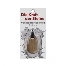 Kraftstein-Anhänger versteinertes Holz (Erdung)