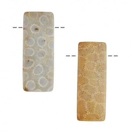 Cabochon Rechteck versteinerte Koralle gebohrt, 4,1cm