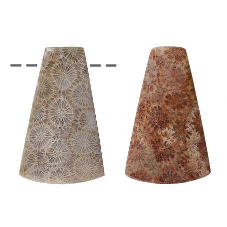 Cabochon Trapez versteinerte Koralle gebohrt, 4,0cm