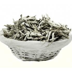 Räucherware -Weißer Salbei lose (Salvia Apiana)