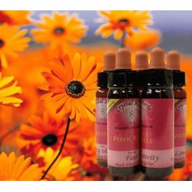 Bachblüten-Karma Blüten Essenz - Pink Rose