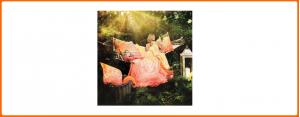 The Spirit of OM ® - Feng Shui zum Anziehen ®