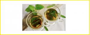 Lebensmittel & Nahrungsergänzung - Tee Welt